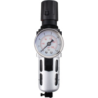 Modular Air Filter/Regulator (Gauge Included) TYY175 | Caster Town